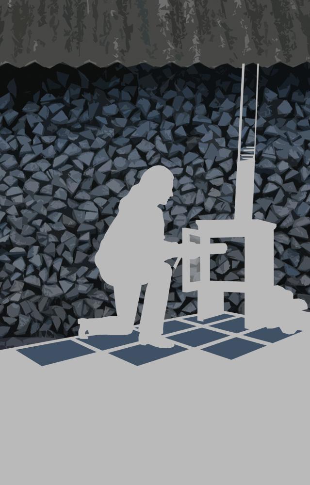Informe sobre uso eficiente de la leña en el Sector Teniente Merino, Puerto Montt